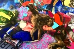 Who-killed-Roger-rabbit_VDOUCET_2018_web